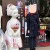 京都女子旅【お寺巡り 人気グルメ】2泊3日おすすめモデルコース!