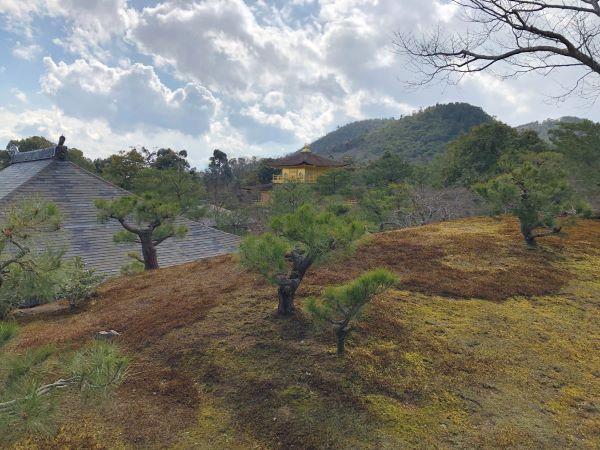 丘から見た金閣寺